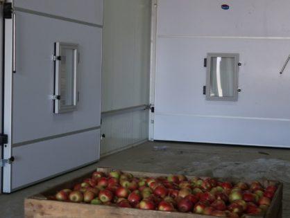 Системы хранения фруктов и ягод